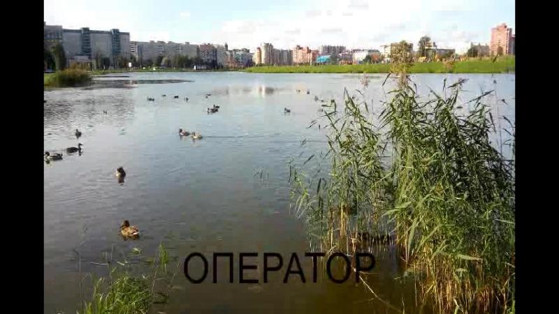 Озеро Долгое 2017