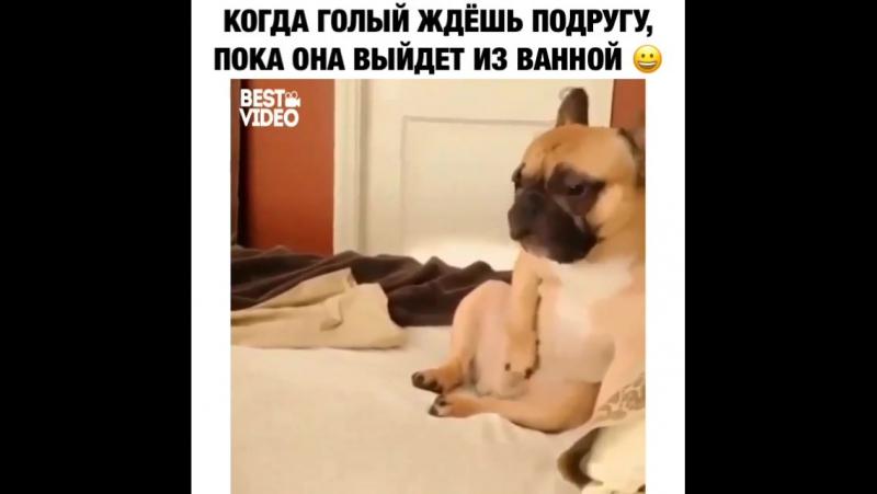 Когда голый ждёшь подругу, пока она выйдет из ванной :)