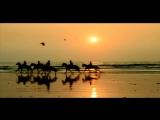 UB40 -  The Train Is Coming   HD