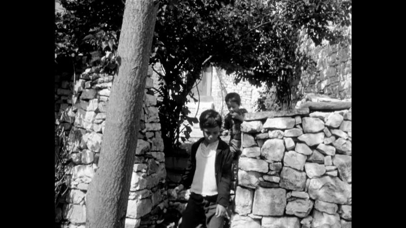 Tomka dhe shokët e tij / Tomka and His Friends [Xhanfize Keko, 1977]