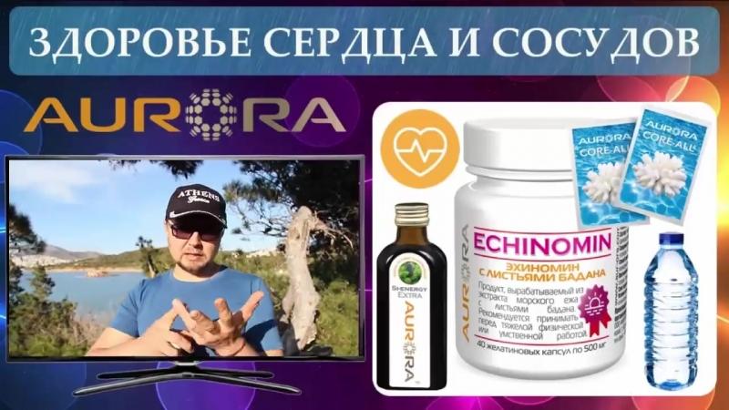 Эхиномин- здоровое сердце, здоровая репродуктивного система, здоровая потенция и многое другое