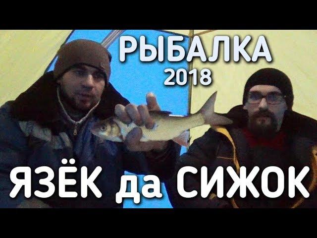 РЫБАЛКА 2018 / ЯЗЕК ДА СИЖОК / БРАТЬЯ ПРИХОДЬКО