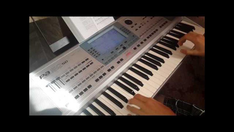 Горіла сосна на синтезаторі