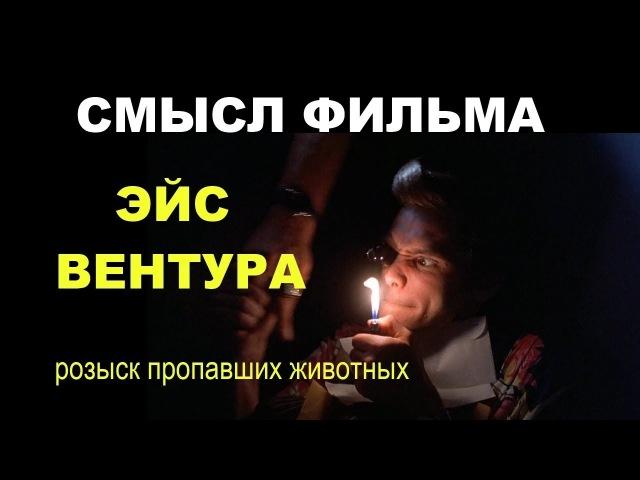 Смысл фильма Эйс Вентура разбор фильма с актером Джим Керри в главной роли психологический разбор