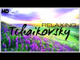 The Best Relaxing Classical Music Ever By Tchaikovsky - Relaxation Meditation Focus Reading