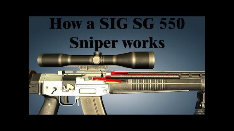 How a SIG SG 550 Sniper works