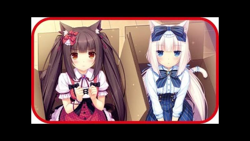 TOP 10 cat girl characters in Anime Neko Kawaii