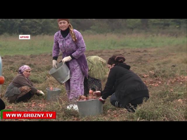 РАМЗАН КАДЫРОВ: РОССИЯ - САМОЕ ДРУЖЕСТВЕННОЕ ГОСУДАРСТВО В МИРЕ