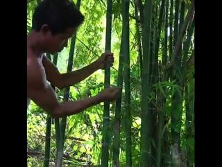 Как изготовить самогонный аппарат в джунглях