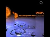 Tangerine Wave Martin Landers  2013.07.09. Tangerine Wave. Radio Shanti. Moscow