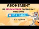 Акции котокафе X-CAT, ТРЦ ЛОТОС PLAZA