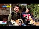 ريف حلب.محمية القطط جهود فردية لرعاية الحيوانات الأليفة