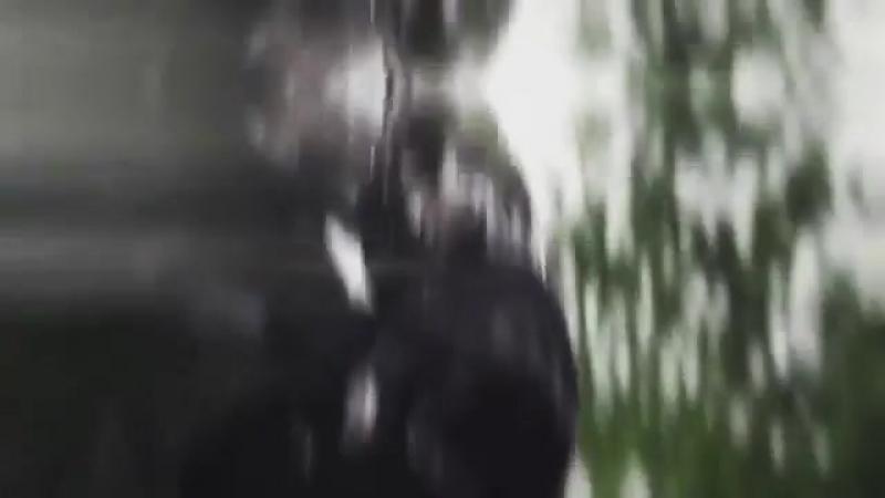 Bucky Barnes / the Winter soldier vine