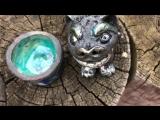 Chandra Tea - RAKU樂
