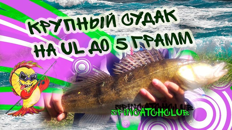 Ловля спиннингом с берега 2018 / Судак на ультралайт / Zander fishing
