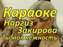 Караоке Наргиз Закирова Ты моя нежность минус