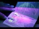 Биометрический паспорт начертание зверя