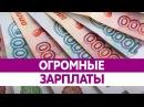 Самые высокооплачиваемые профессии в России