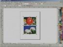 025. Использование Corel PHOTO-PAINT для преобразования в CMYK - CorelDRAW 12. Виздизайн