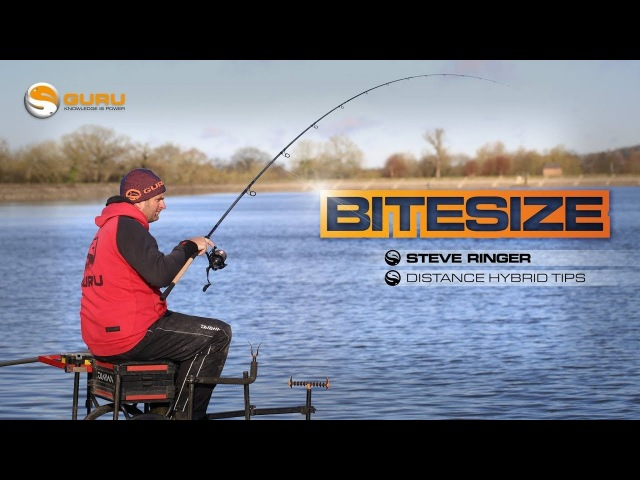 GURU BITESIZE: Distance Hybrid Tips - Steve Ringer