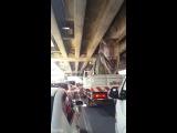T-Rex stuck in traffic