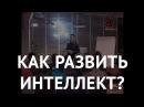 Что такое интеллект и как его развивать? Сноб, Андрей Курпатов xnj nfrjt byntkktrn b rfr tuj hfpdbdfnm? cyj,, fylhtq rehgfnj