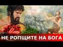 Не ропщите на Бога.Священник Игорь Сильченков