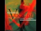 Karl Jenkins &amp Adiemus - Aria (from Adiemus V - Vocalise, 2003)