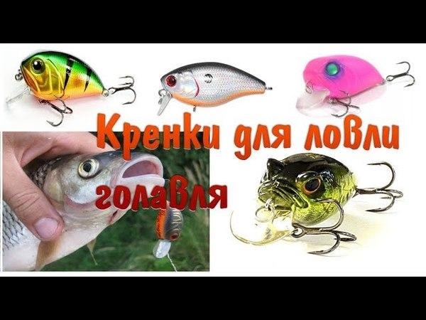 Обзор бюджетных кренков для ловли голавля