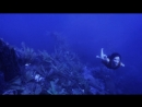 Sappho - drowning
