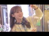 · Show · 180119 · OH MY GIRL (Arin) · MOMO X