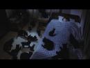 Проклятие (Ju-on) (2002)