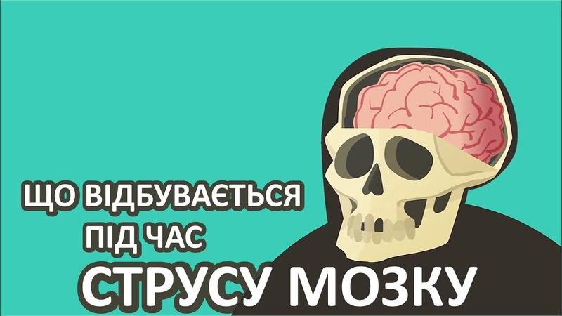 Що відбувається під час струсу мозку [TED-Ed]