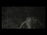 Belphegor - Bluhtsturm Erotika