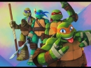Черепахи товарняк против Шрида