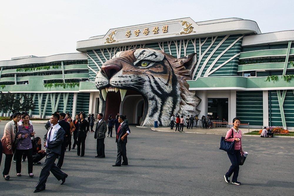 Новосибирские звери в Пхеньяне