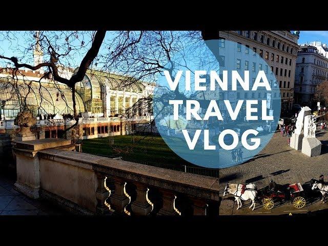 Вена: дворец Шенбрунн, Венская опера, Хофбург Vienna Travel Vlog