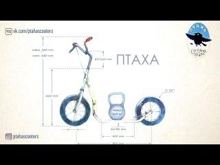 Самокат ПТАХА: видео с парковки