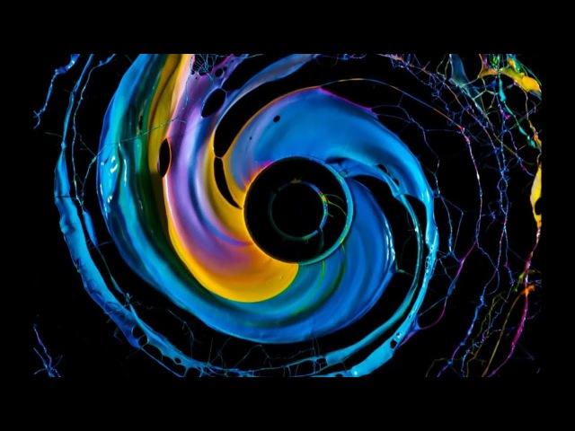 Фабиан Офнер: Психоделическая наука