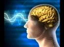 Программа улучшения памяти с поющими чашами