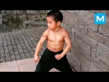 Little Dragon - Baby BRUCE LEE - Ryusei Imai Muscle Madness