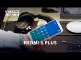 Быстрый обзор | Xiaomi Redmi 5 Plus и розыгрыш