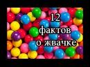 12 ФАКТОВ О ЖВАЧКЕ/ВСЕ О ЖЕВАТЕЛЬНОЙ РЕЗИНКЕ