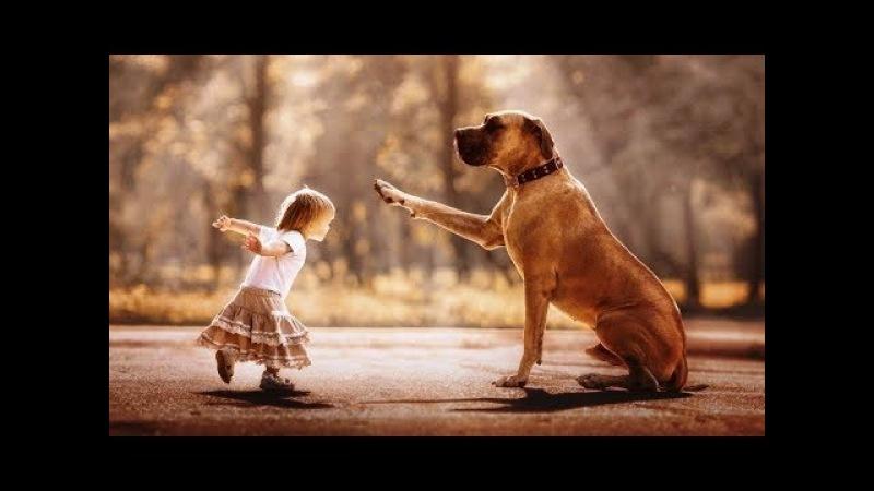Kleine Kinder und Ihre großen Hunde Little kids and their big dogs