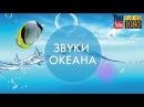 30 мин 💙 Лучшая Лаунж Музыка для Релакса 🎵 Спокойная Эмбиент Мелодия на Каждый День 🎵 Звуки океана