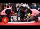 The Freakishly Fast World of Robot Sumo