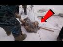 НИФИГА СЕБЕ РЫБАЛКА ВЫШЛА 😀Везучая лунка 😀 Зимняя рыбалка в ЕАО ВОТ ЭТО РЫБА