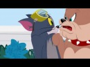 Tom and Jerry - توم و جيري Cartoon Full 2017 new HD COLLECTION