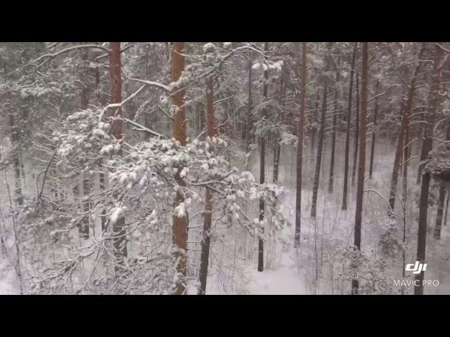Gomel Первый 2017 снег