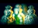 Духи-амулет «Голубая агава»